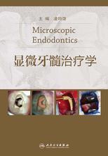 显微牙髓治疗学