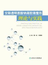 交联透明质酸钠凝胶微整形理论与实践