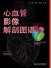 心血管影像解剖图谱